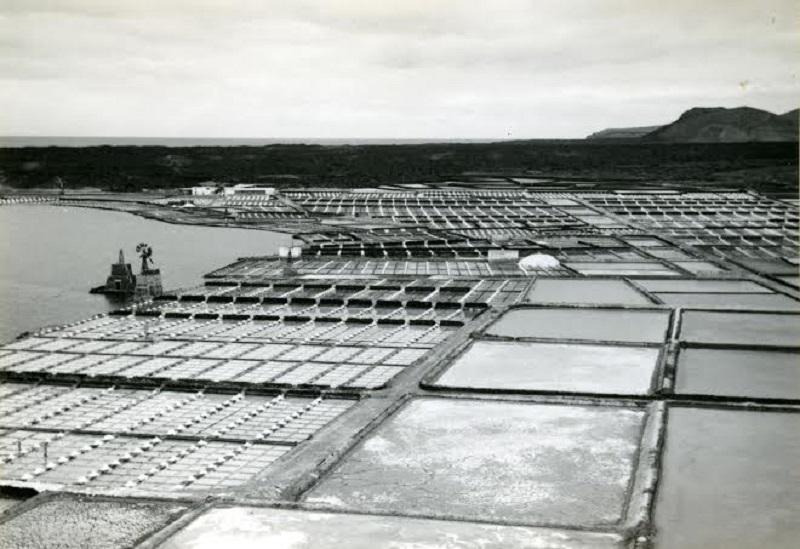 Las Salinas de Janubio en los años 60 a tope de producción