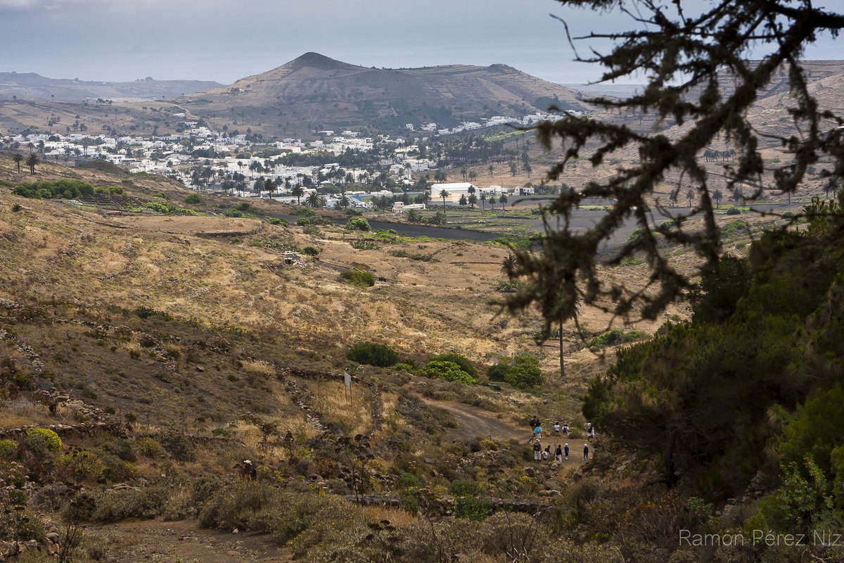 El valle de las mil palmeras